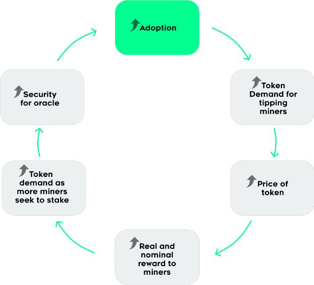 Tellor-Adoption-cycle